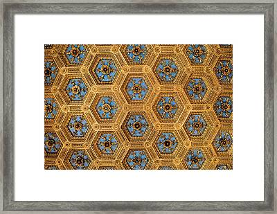 Overhead Beauty Framed Print by