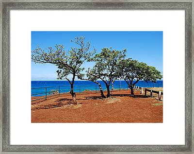 Framed Print featuring the photograph Overlook In Maui by Caroline Stella
