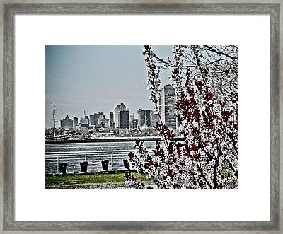 Overlooking Philly From Camden Framed Print