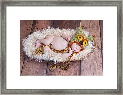 Owl Be Sleeping Framed Print by Cindy Lindow
