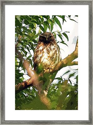 Framed Print featuring the digital art Owl In Contemplation by Pravine Chester