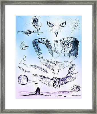 Owl In Flight Framed Print