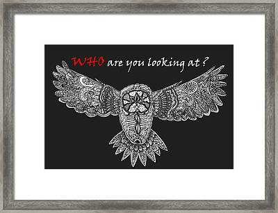 Owl In Flight Framed Print