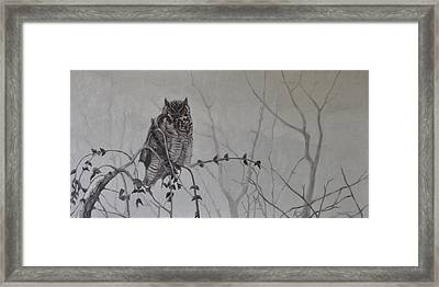 Owl In The Mist Framed Print