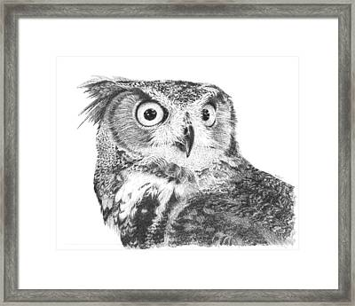 Owl No2 Framed Print