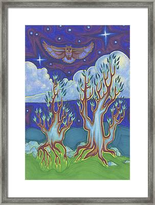 Owl Sky Framed Print by James Davidson