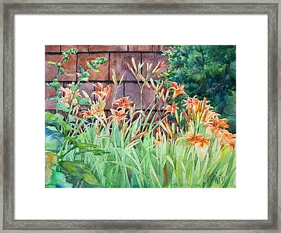Oxenden Lilies Framed Print by Peter Sit