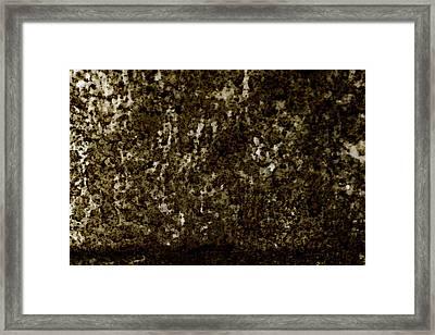 Oxidation Framed Print by Sandra Pena de Ortiz