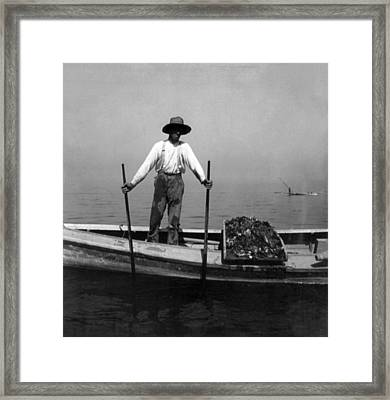 Oyster Fishing On The Chesapeake Bay - Maryland - C 1905 Framed Print