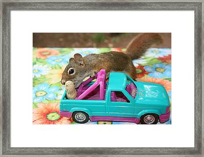 Packing For A Trip Framed Print by Paula Brown
