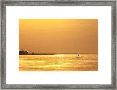 Paddle Boarder At Dawn Framed Print