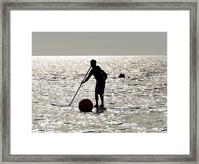 Paddle Boarding Framed Print by David Lee Thompson