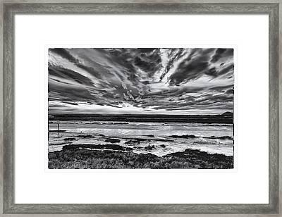 Padilla Bay Framed Print