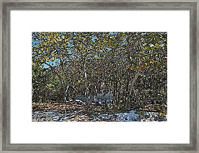 Paint Framed Print