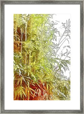 Painted Bamboo Framed Print