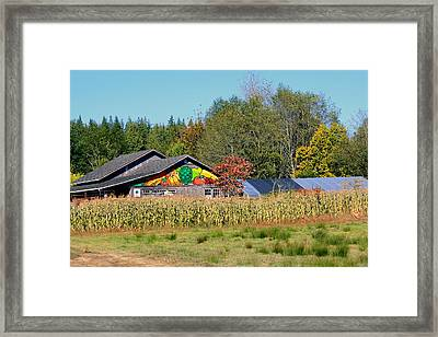 Painted Barn Framed Print by Chris Anderson