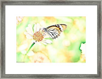 Painted By A Camera Framed Print