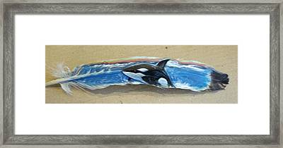 Painted Feather Of Orca Whale Framed Print