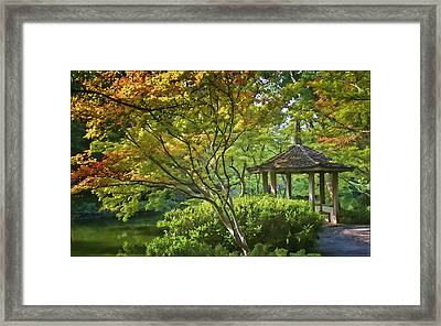Painted Gardens Framed Print by Joan Carroll