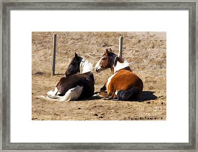 Painted Horses I Framed Print by Angelique Olin