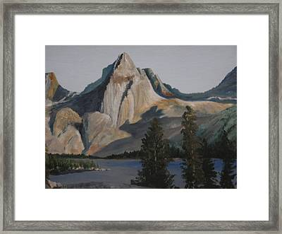 Painted Lady Framed Print by Barbara Prestridge