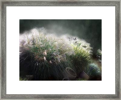Painted Pampas Framed Print
