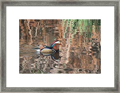 Painted Waters Framed Print