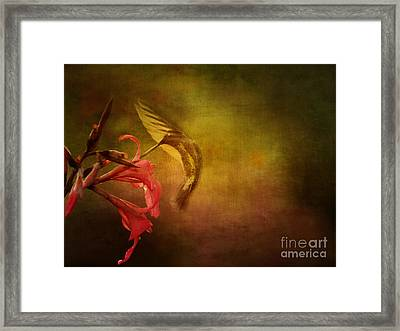 Framed Print featuring the photograph Painterly Ballet by Anne Rodkin