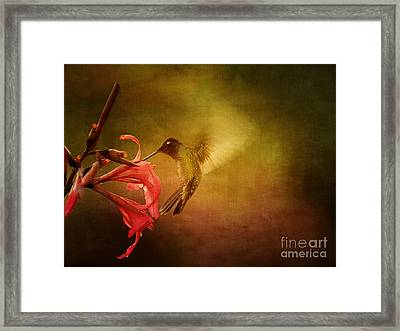 Framed Print featuring the photograph Painterly Hummingbird #2 by Anne Rodkin