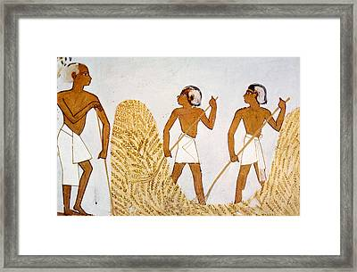 Painting Of Farmers Working Framed Print by Everett