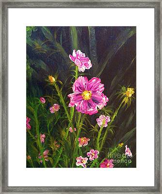 Painting Pink Streaked Cosmos Framed Print