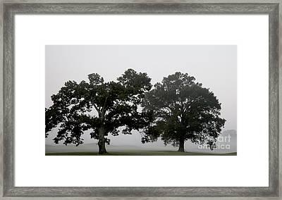 Pair Framed Print by Amanda Barcon