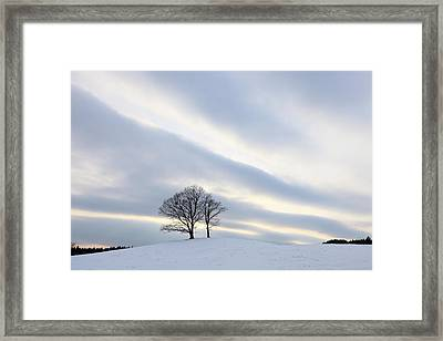 Pair Of Trees On Hill At Sunset Framed Print by I am happy taking photographs.