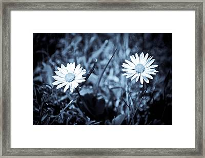 Paired Framed Print by Ruth MacLeod