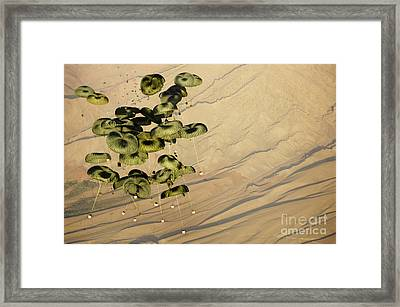 Pallets Of Cargo Dropping From A C-17 Framed Print by Stocktrek Images