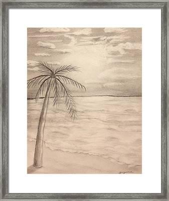 Palm Breeze Framed Print