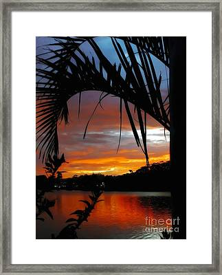 Palm Framed Sunset Framed Print by Kaye Menner