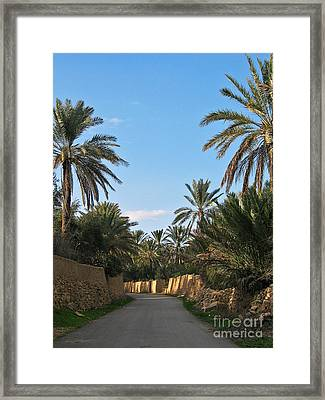 Palm Gardens In Palmyra Oasis Framed Print by Issam Hajjar
