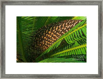 Palm Heart Framed Print