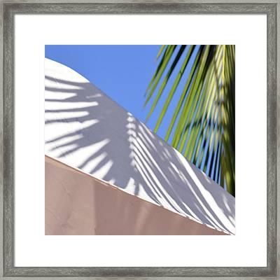 Palm Leaf Framed Print by SteffenTuck