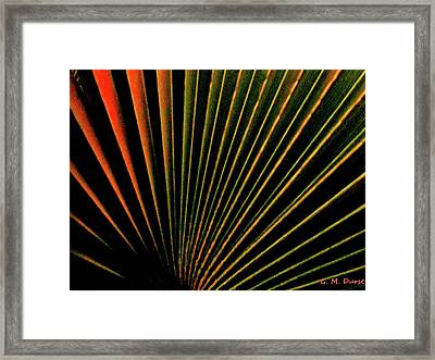 Palm Lines Framed Print by Michael Durst