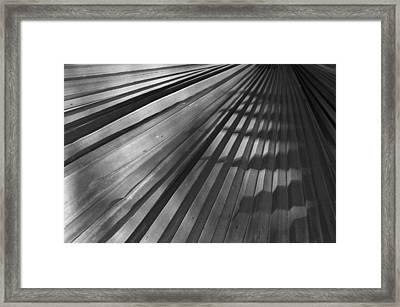 Palm Mystery Framed Print by Sandy Fisher