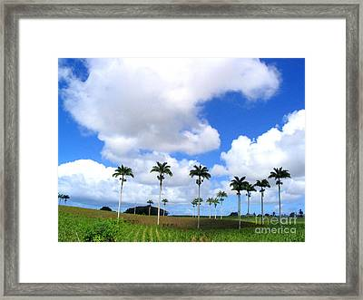 Palm Parade Framed Print by Barbara Marcus