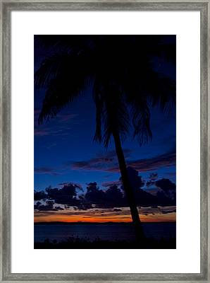 Palm Silhouette Framed Print by Mike Horvath