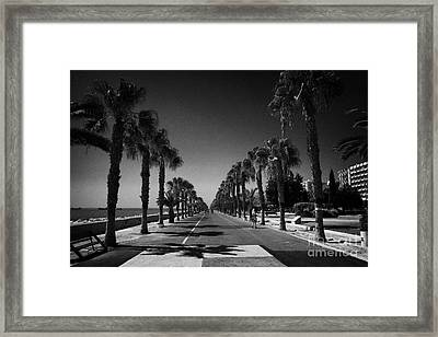 palm tree lined seafront promenade in twin cities park on reclaimed land Limassol lemesos Framed Print