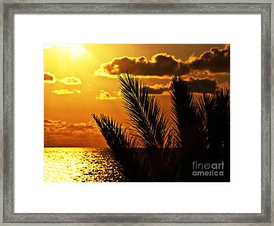 Palm Tree Silhouette At Sunset On The Beach Framed Print by Anna Om