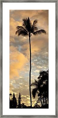 Palm Tree Sunset Hana Hawaii Framed Print by Dustin K Ryan