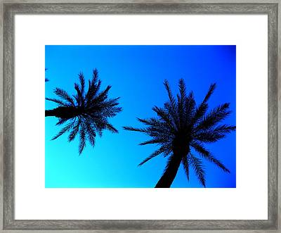 Palm Trees At Dusk Framed Print