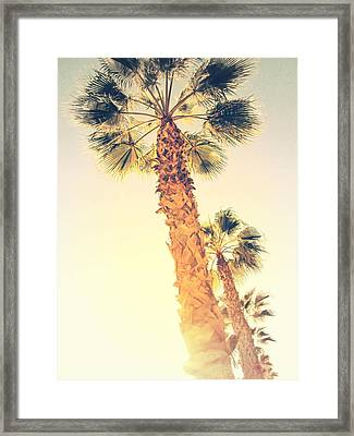 Palm Trees In Alicante - Spain Framed Print by Marianna Mills