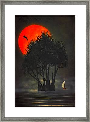 Palm Trees In The Sunset Framed Print by Tom York Images